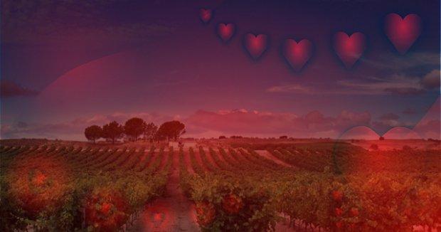 Un San Valentín en la Ribera del Duero