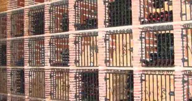 Bodegas Bonitas a Visitar en Ribera del Duero