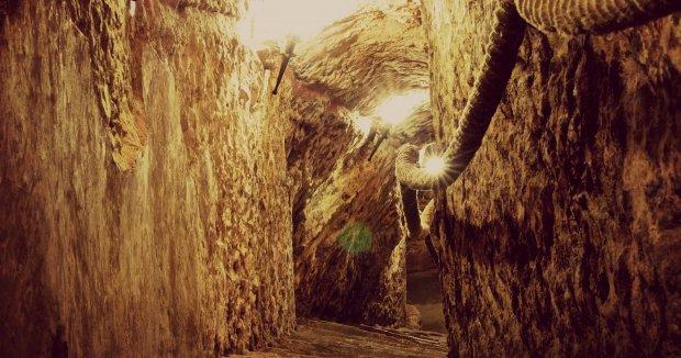 Visitas gratuitas en Bodegas de Ribera del Duero