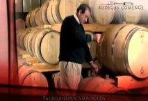 Comenge - Bodegas Ribera del Duero - Enoturismo ruta del vino