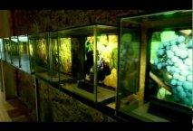 Museo Provincial del Vino - Valladolid-